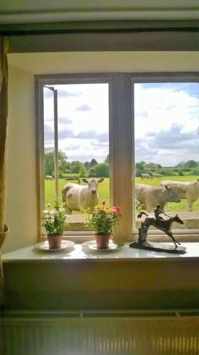 Battens Farm Cottages B&B Cover Picture