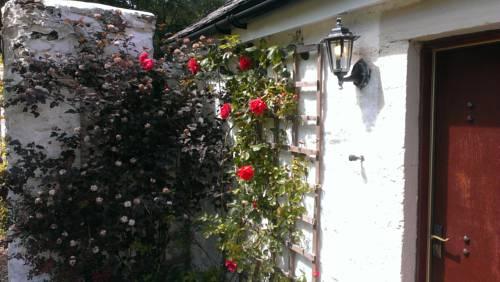 Whitestone Cottage Cover Picture