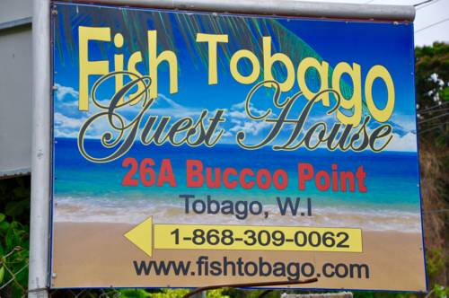 Fish Tobago Guesthouse Cover Picture