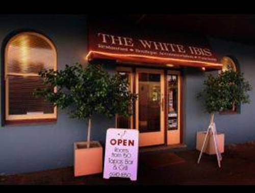 The White Ibis Cover Picture