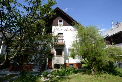 Hiša Anton Cover Picture