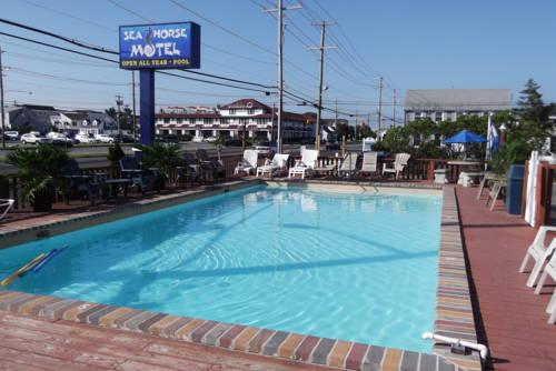 Sea Horse Motel Cover Picture