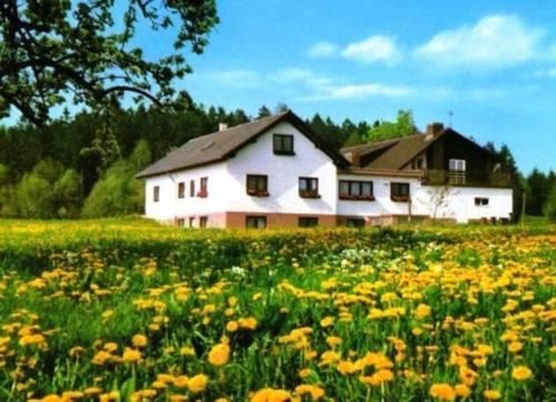 Gasthaus-Pension Zum Brandweiher Cover Picture