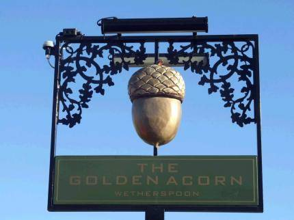 The Golden Acorn Cover Picture