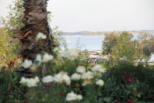 The Vaal Lookout Cover Picture