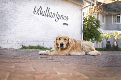 Ballantynes Lodge Cover Picture