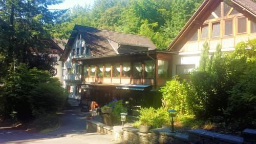 Siegerland-Hotel Haus im Walde Cover Picture