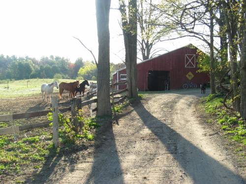 Country and Farm Casitas - For Horse and Hot Tub Lovers Cover Picture