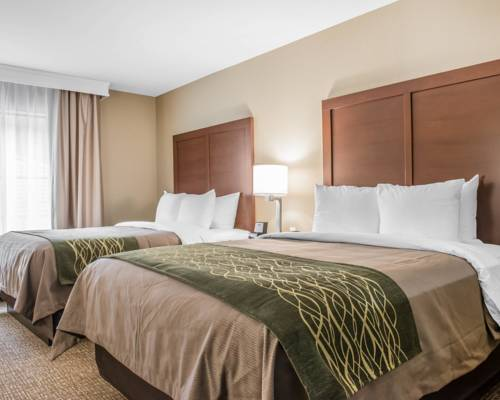 Comfort Inn & Suites Pittsburgh Cover Picture