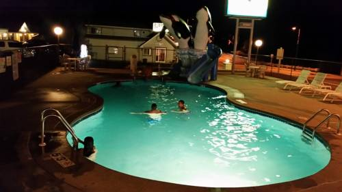 Surfside Motel Cover Picture