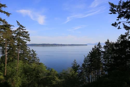 Sea Cliff Cover Picture