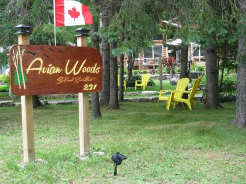 Avian Woods Cover Picture