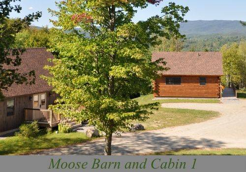 Muddy Moose Cover Picture