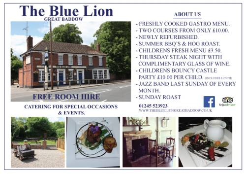 The Blue Lion Cover Picture