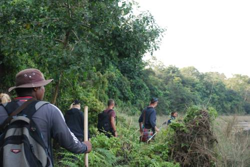 Chitwan Bamboo Lodge Cover Picture