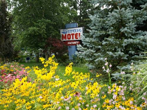 Swan Motel Cover Picture