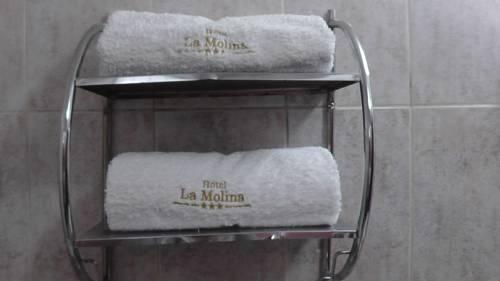 Hotel La Molina Cover Picture