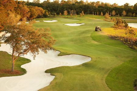The National Golf & Country Club at Ave Maria Cover Picture