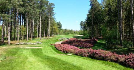 Golf Du Champ de Bataille Cover Picture
