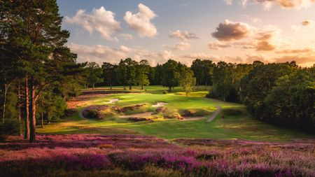 Saint George's Hill Golf Club Cover Picture