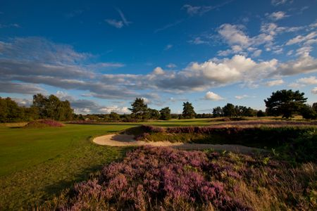 Walton Heath Golf Club - Old Course Cover Picture