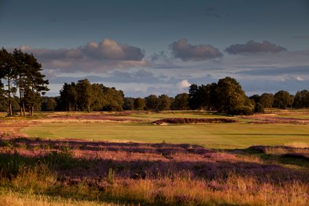 Walton Heath Golf Club - New Course Cover Picture