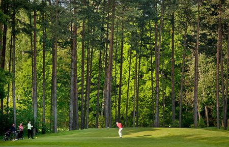 Golf Club Bad Saarow - Palmer Course Cover Picture