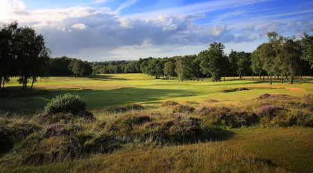 Royal Ashdown Forest Golf Club - Old Course Cover Picture