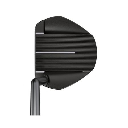 Putter Fetch (2021) Ping Golf Picture