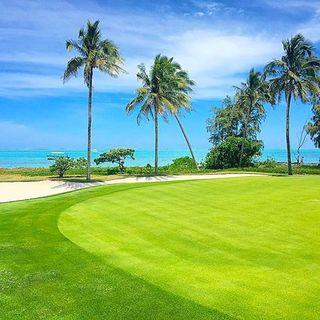 Ile aux cerfs golf club post image