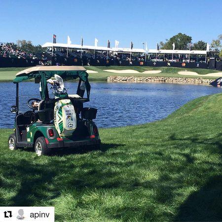 Golf wrx post image
